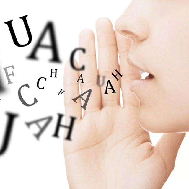 Maîtrise des langues étrangères